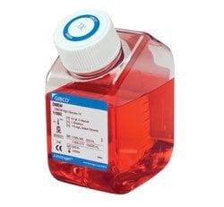 DMEM, high glucose, pyruvate