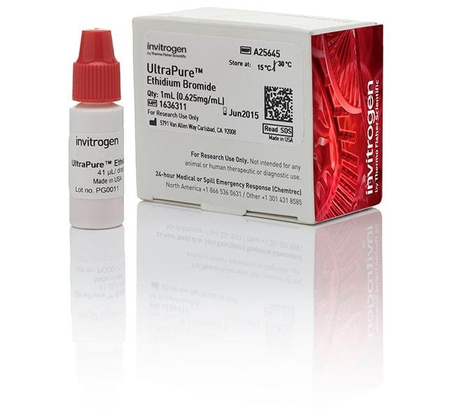 UltraPure™ 溴化乙锭,0.625 mg/mL