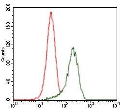 SHH Antibody in Flow Cytometry (Flow)